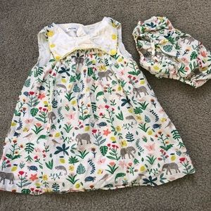 Baby Boden Jungle Dress with matching diaper cover